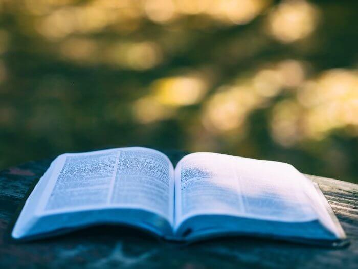 IQも上がる!思考のリミッターを外して読書スピードを大幅に上げる訓練法